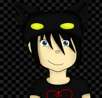 Xion's Hat by kyoshiwarrior14