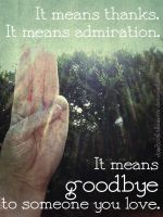 Thanks, Admiration, Goodbye by dontscratchthemirror