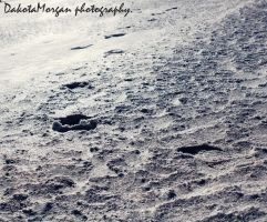 Footprints by photographygirl13