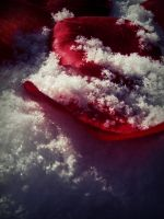 fake rose petals in the snow 2 by mysteriousfantasy