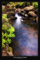 Cascading Creek by AB-Photography