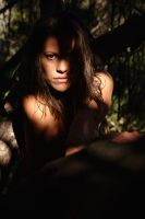 jungle shadows 2 by andre-j