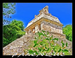 Palenque by Willihelm