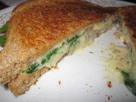 spinach grilled cheese sandwich by nightblue1991