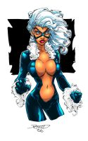 Black Cat in Color by rantz