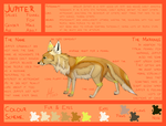 Jupiter | Reference Sheet (2017) by Icarust