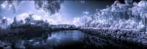 Tropical Garden Pano infrared by MichiLauke