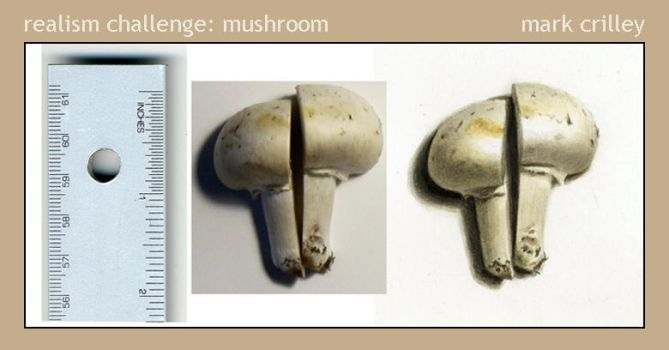 Realism Challenge: Mushroom by markcrilley