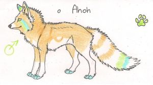Ref sheet for Ahoh by Crazywolfs