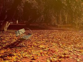 nobody in my autumn by AripiDePlumb