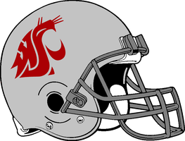 Washington State 2011-present Helmet by Chenglor55