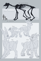 GARROX Species Guide - Body Types by Icarusis