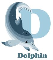 D is for Dolphin by RSImpey