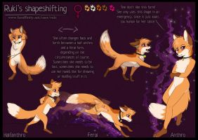 Ruki's Shapeshifting by RukiFox