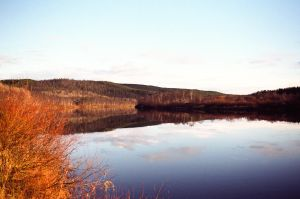 Kola river at autumn by elhoff