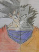 Son Goku and Son Nicanor by supercoquina