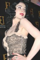 Dita von Teese 13 by Hollinger