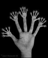 Untitled - Hands by fearnoart