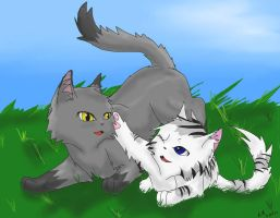 Dovepaw and Ivypaw by StormFalconFire