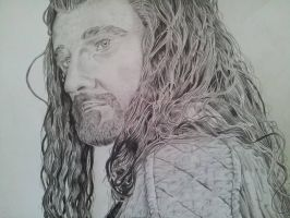 Thorin Oakenshield by HenningBlom