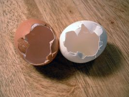 Egg Series 4 by Cynthetic