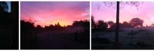 Mist and Sunrise Oct 27 04 by hesir