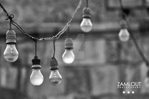 Zamlout Photography by Zamlout-Photography