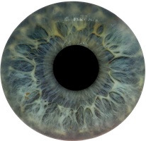 Eye Iris Josip by NJakStudio