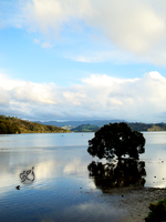 Whitianga River by CS-01