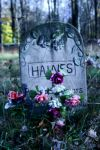 Grave stone by iamthewalrus67