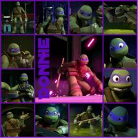 TMNT:: Donnie: Collage by Culinary-Alchemist