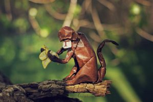 Monkey Business (origami) by FoldedWilderness