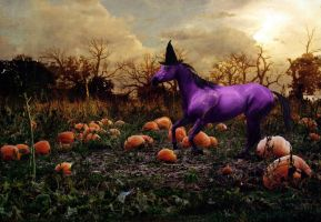 AT: Whimsy and the pumpkin by xdancingintherain