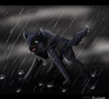 Stand in the Rain by o0Wolf-Spirit0o