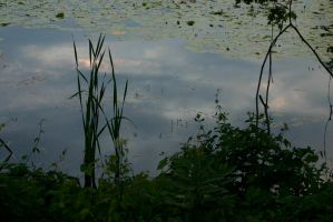 Reflections in Lake Orion by nwalter