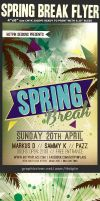 Spring Break Party Flyer Template v3 by Hotpindesigns