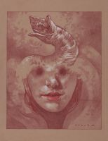 Second Sight of the Bene Gesserit by stevenrussellblack