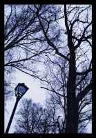 lamp post and trees by Umbrella-Lenore