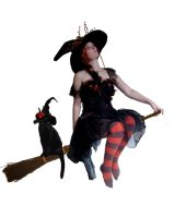 witch on broom by Jazzman1989