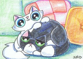 Funny cat Aceo Time to get up by KingZoidLord