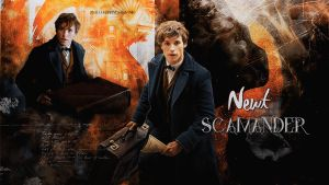 Newt Scamander wallpaper 02 by HappinessIsMusic