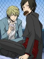 Shizuo and Izaya - Durarara by SandTsunami