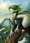 DraGuradians - Dragon of Health by J-C