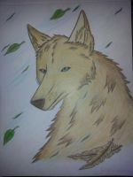 wolf in the wind by saraninja