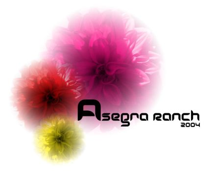 Asegra 2004 by arieon
