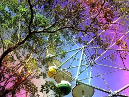 rainbow ferris wheel by pinkpumpkin023