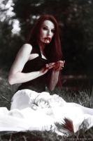 dracula's bride by VictoriaMorphine