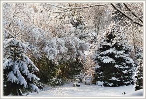 At Last Snow by denise-g