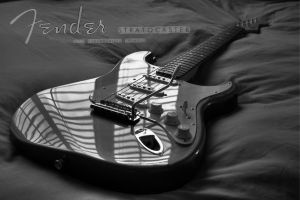 Fender Stratocaster by Rovanite