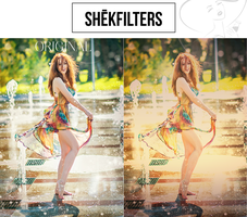 FREEBIE I: Photoshop Action by ShekFilters